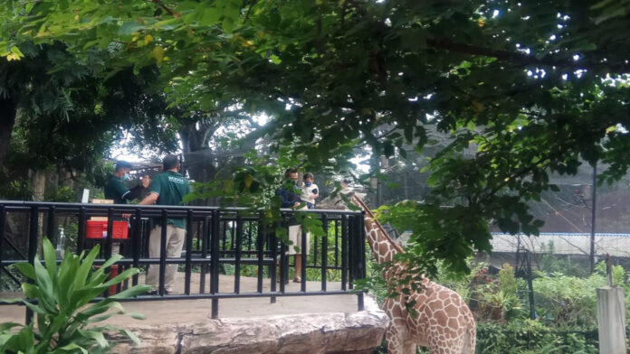 Bazooga Bandung Taman Sari